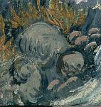 The boulders in the lower left corner, providing a stillness